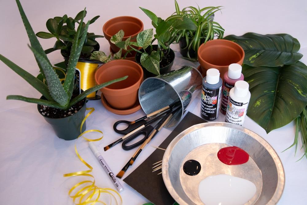 Idee cadeau vegetal etape1