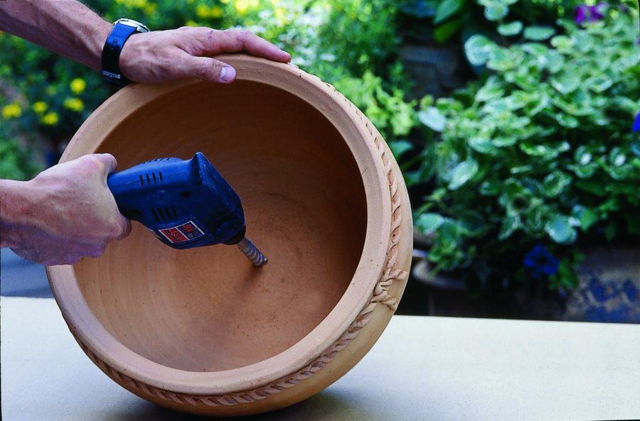 Plantation culture en pot