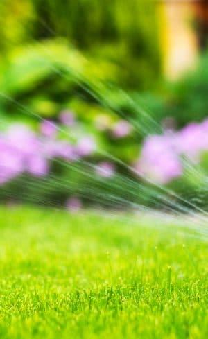 Solutions pour une irrigation réussie de votre jardin