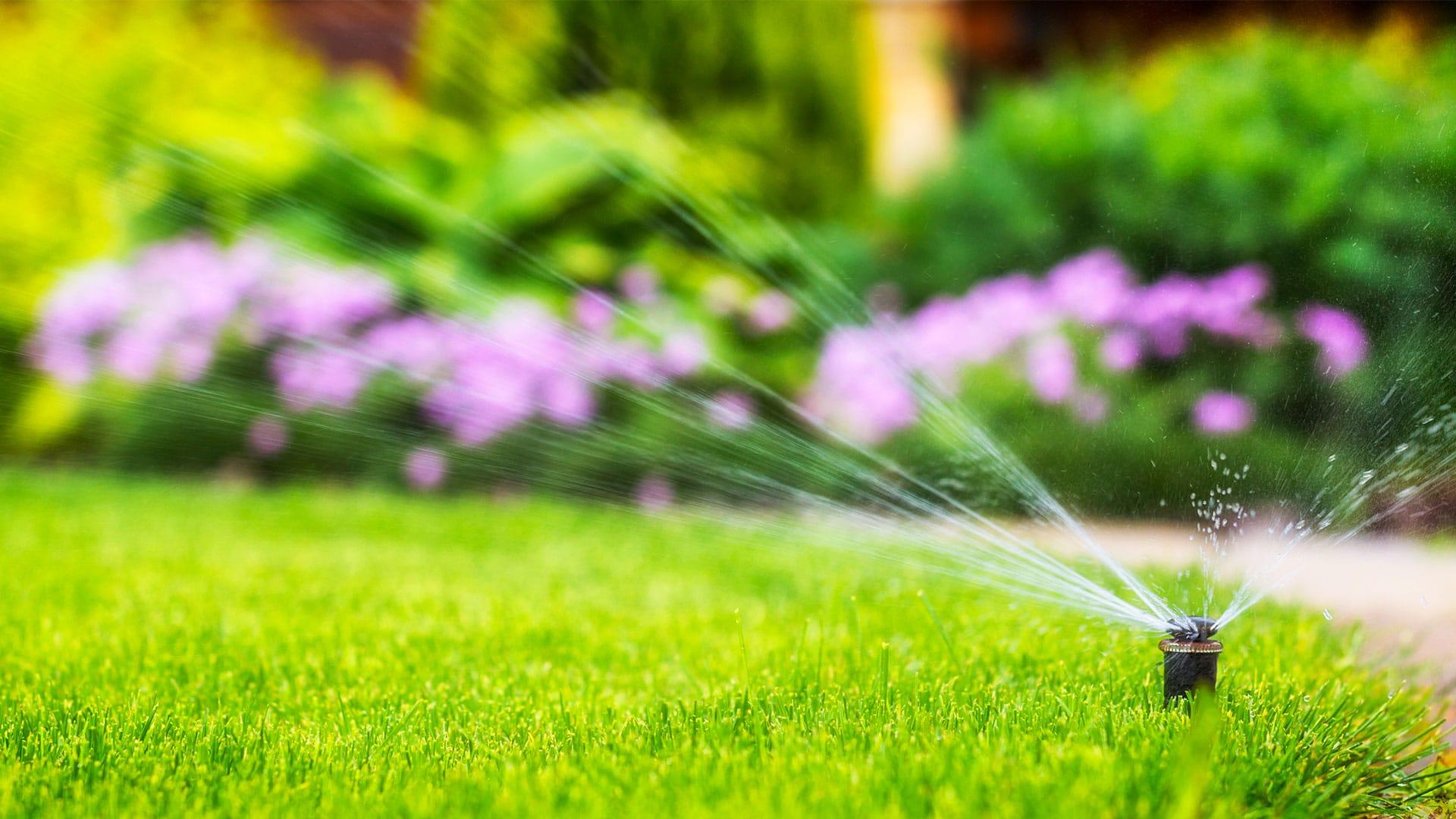 Solutions pour une irrigation réussie