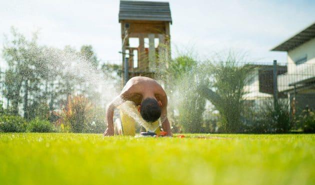 Prendre soin de sa pelouse en période de sécheresse