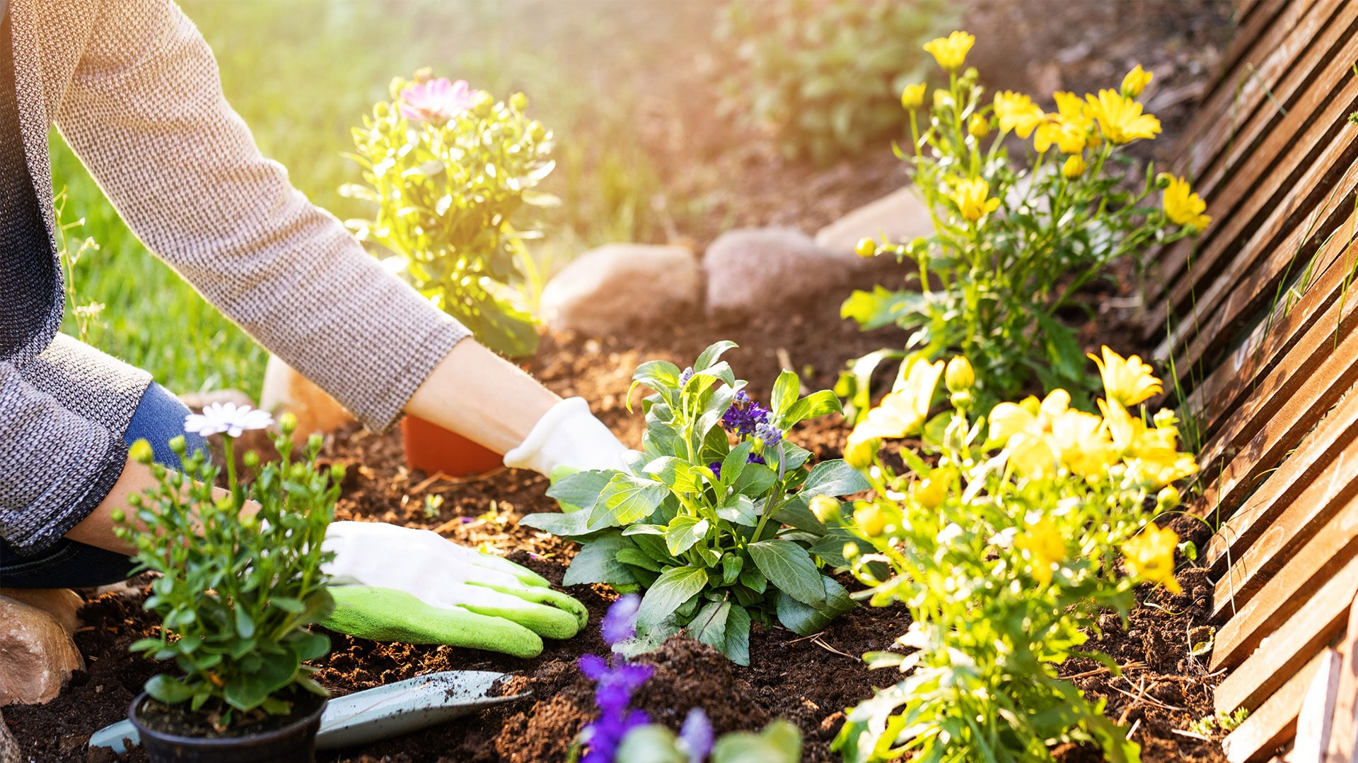 Jardiner en mai