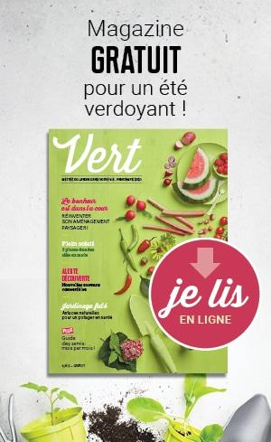 Magazine Vert 2021