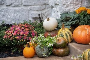Decor exterieur automne