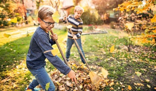 Entretenir sa pelouse l'automne